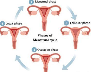 Aktivieren ohne schwangerschaft milchdrüsen Galaktorrhoe
