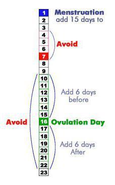 32d70b49044 See näitab, et folliikuli avaneb 23. päeval pärast menstruatsiooni algust.  Meesrakkude elujõulisuse tõttu võime öelda järgmist. Turvalised päevad on  pikad ...