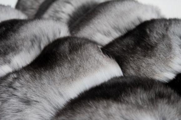 Жасанды маинк пальтосын қалай ажыратуға болады