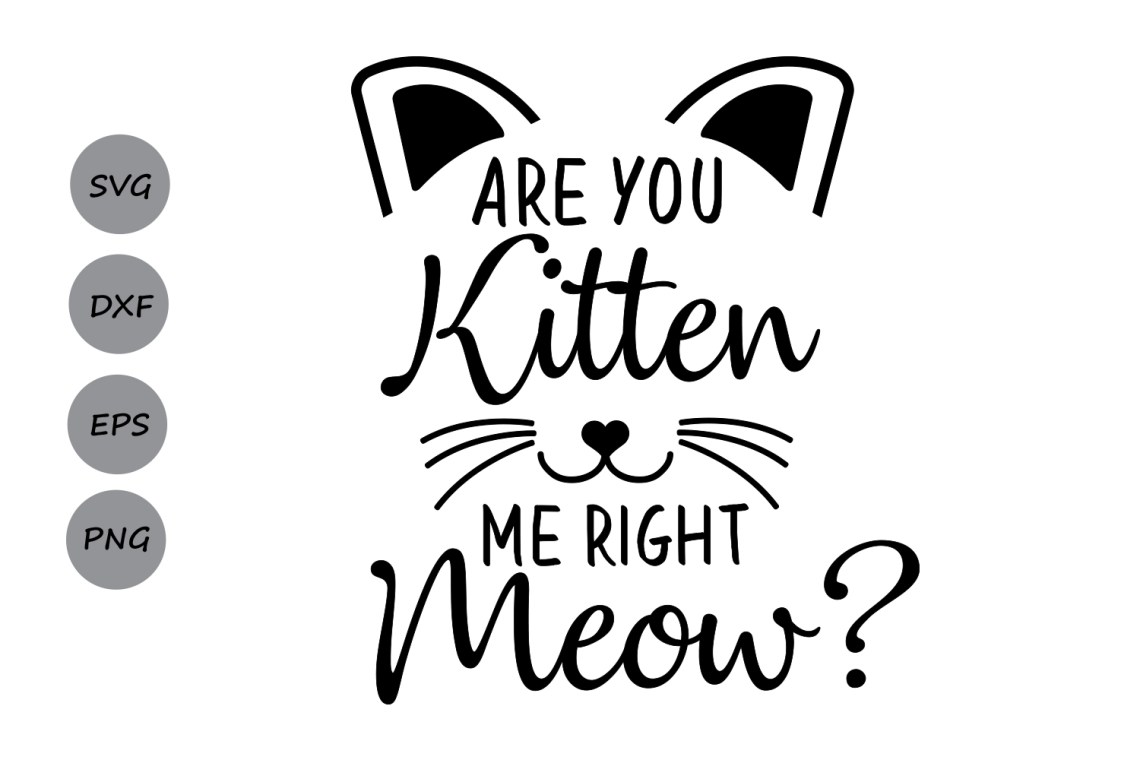 Are you kitten me right meow? SVG, cat svg, kitten svg ...