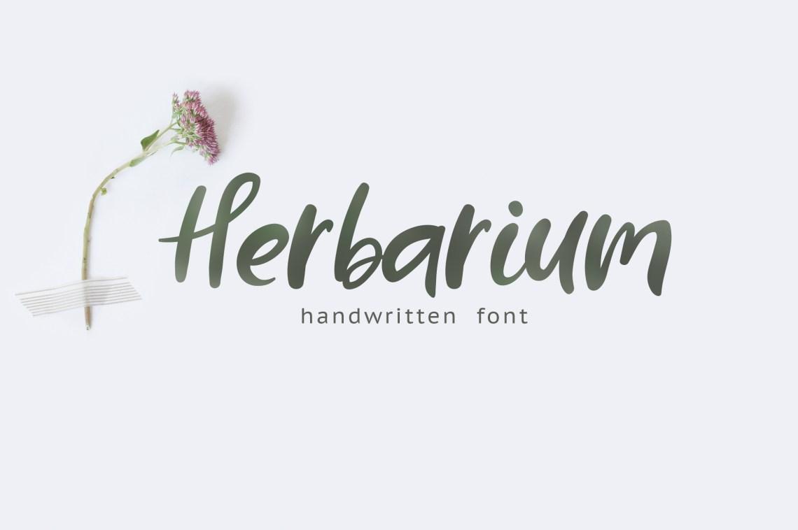 Download Herbarium font. New Language Update! (74608) | Script ...