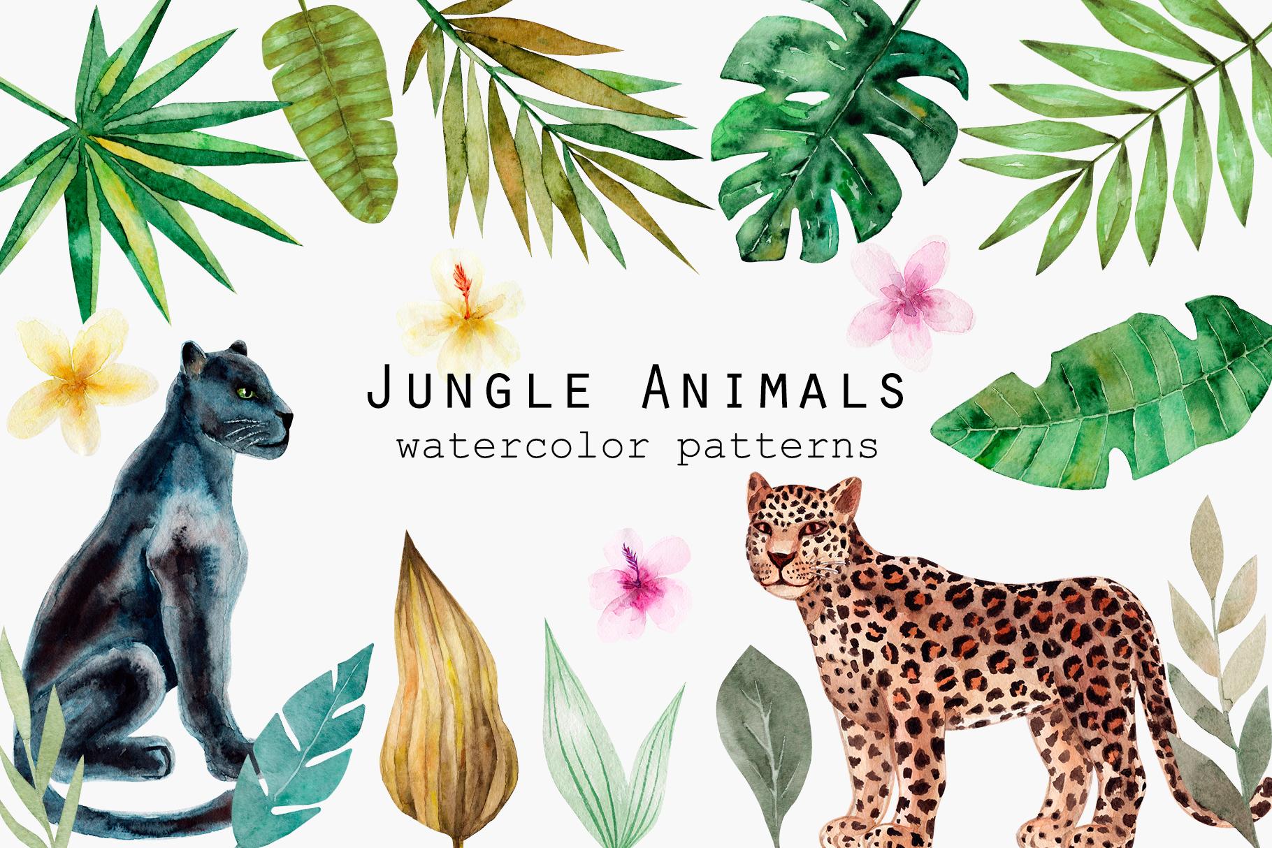 Jungle Animals Watercolor Patterns