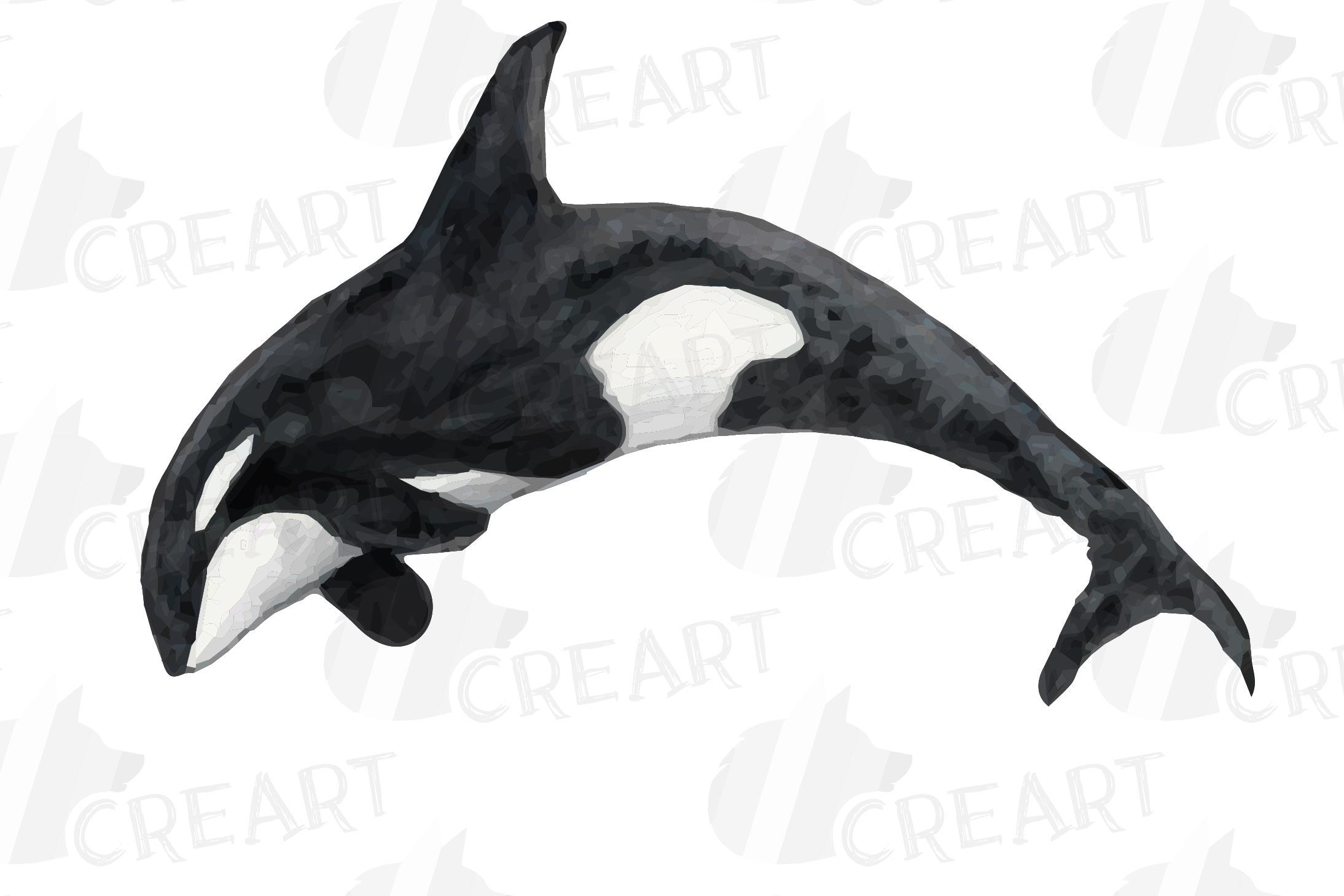 Orca Family Watercolor Clip Art Pack Killer Whales Decor