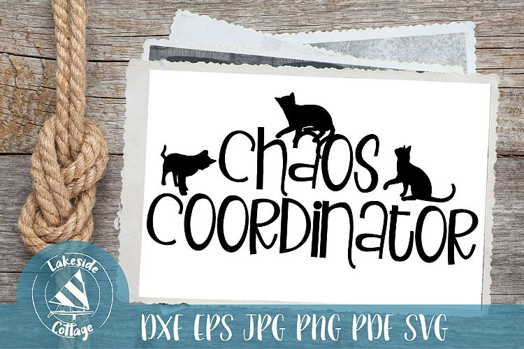 Download Cat Chaos Coordinator - Cat Lover SVG Design (223701 ...