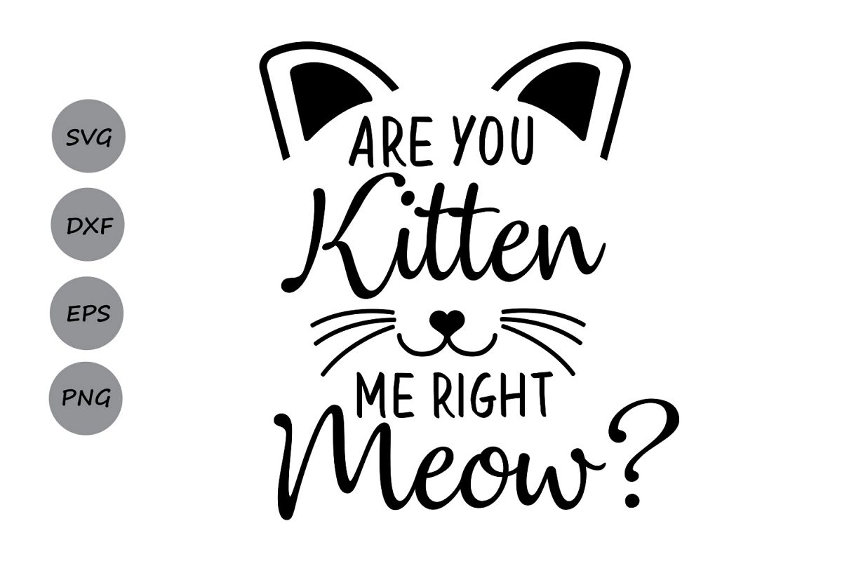 Are You Kitten Me Right Meow Svg Cat Svg Kitten Svg
