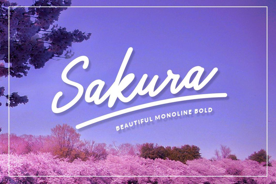 Download Sakura Bold Font Set (16626) | Logo | Font Bundles