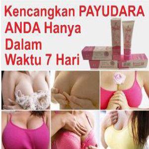 Hoshi Breast Cream Pembesar Payudara BPOM