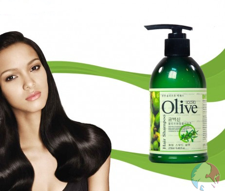 olive hair shampoo