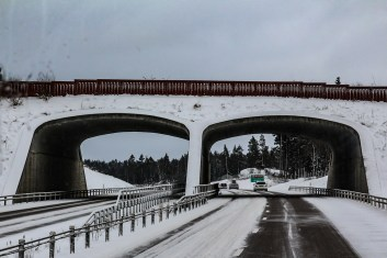 180203-133333-bussvy-IMG_9473