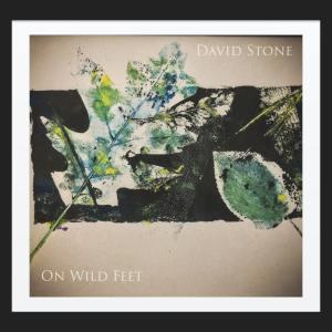 David Stone - On Wild Feet