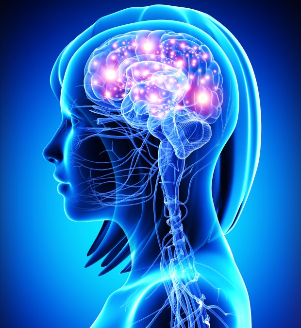 Bigger Gene Picture May Provide Better Epilepsy Therapies