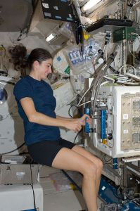 ISS-20_Nicole_Stott_works_with_the_Mice_Drawer_System_(MDS)_in_the_Kibo_lab