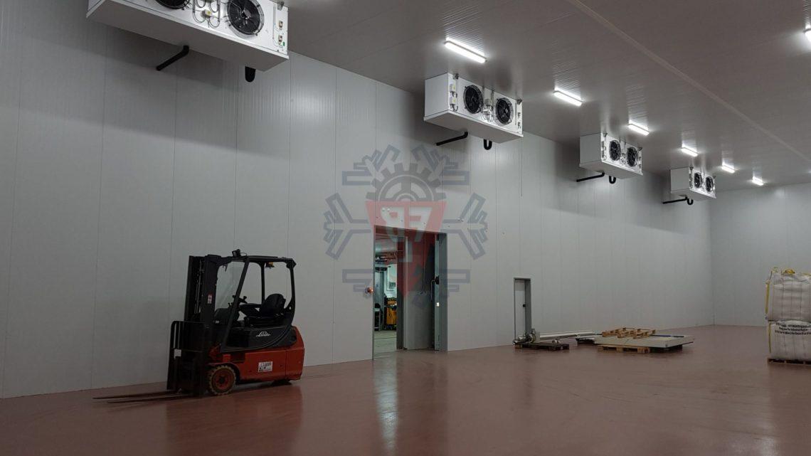 Câmara Congelados Logística - F. Brigido