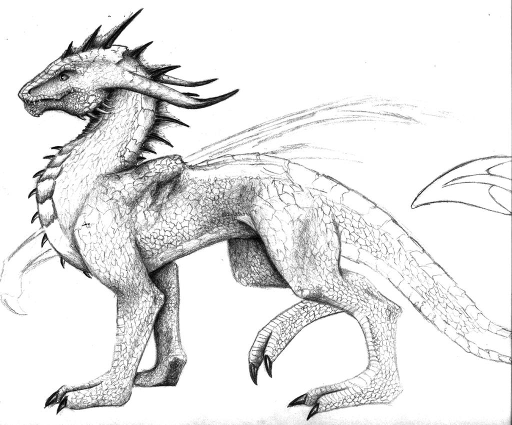 Detailed Dragon Retouched By Zyenthillias On Deviantart