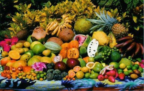 """Résultat de recherche d'images pour """"paradis sur terre fruits animaux"""""""
