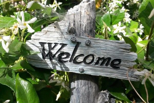 "A wooden sign reading, ""Welcome"" sits in a patch of jasmine."