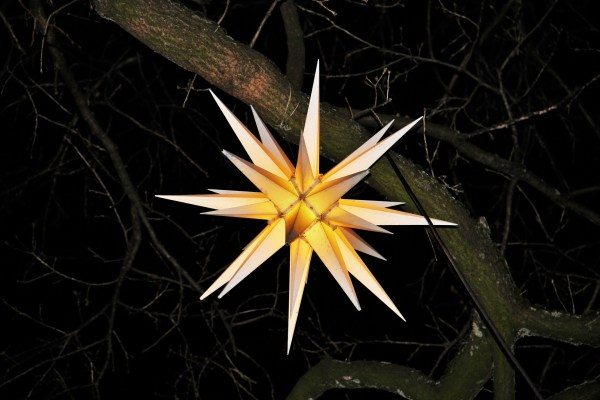 A three-dimensional star with a golden center and shining white points hangs from a tree branch in the dark.