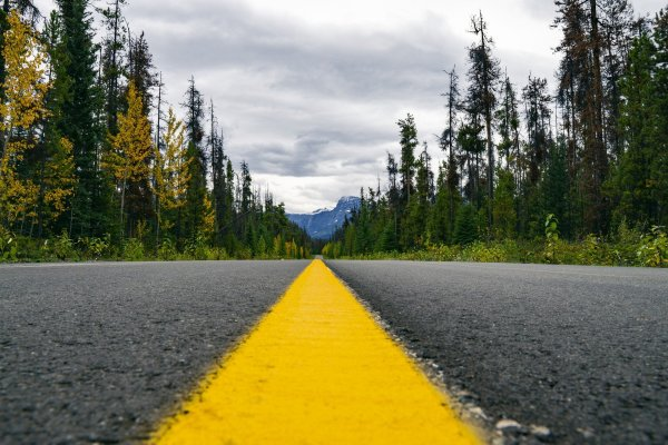 A close-up of a bright yellow line running down the center of an asphalt road, lined by trees on either side. A mountain peak is visible in the distance. Image by Joshua Woroniecki from Pixabay.