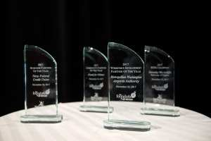 A photo of the 4 awards on a table