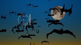Bats Generator