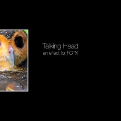 Talking Head effect for Final Cut Pro X