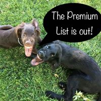 The Premium List Is Out