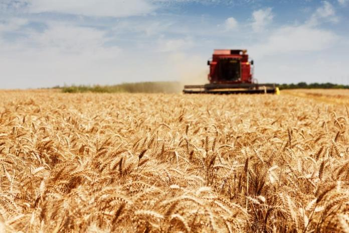 Cargill/ADM joint venture to support grain farmers in North America