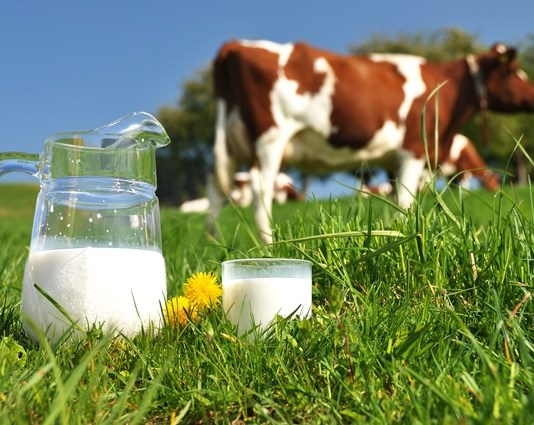 €40m dairy research facility launched in Ireland