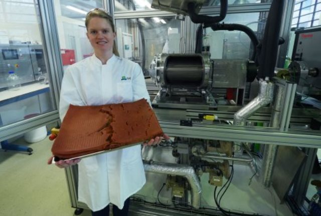 Research partnership paves way for next-gen meat substitutes