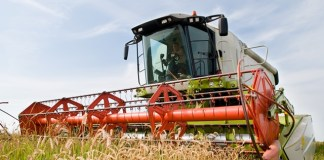 Brexit certainty needed for farmers as confidence plummets