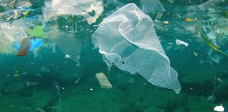 Food businesses throw weight behind plastic pollution pledge