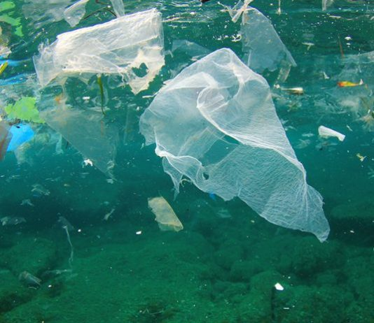 How can we reduce plastic pollution in the oceans?