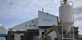 Algaia expands French algae facility with €4m funding boost