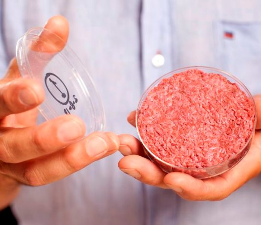 Mosa Meat raises €7.5m to launch cultured meat