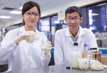 Researchers create probiotic drink from soy pulp