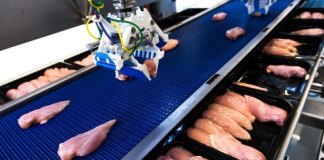 Dutch collaboration research flexible robotics for food production