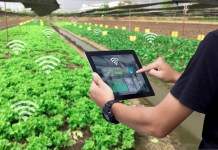 Agritech adoption critical to driving UK farming growth, whitepaper claims