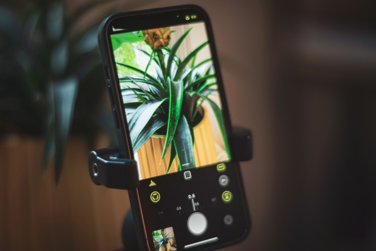 Pembaruan Halide 2.5 menghadirkan mode makro ke semua iPhone