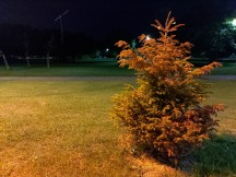 Low-light samples, main camera, 12MP, HDR Auto - f/1.8, ISO 1713, 1/20s - Asus Zenfone 6 review