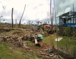 Devastated countryside after Typhoon Haiyan