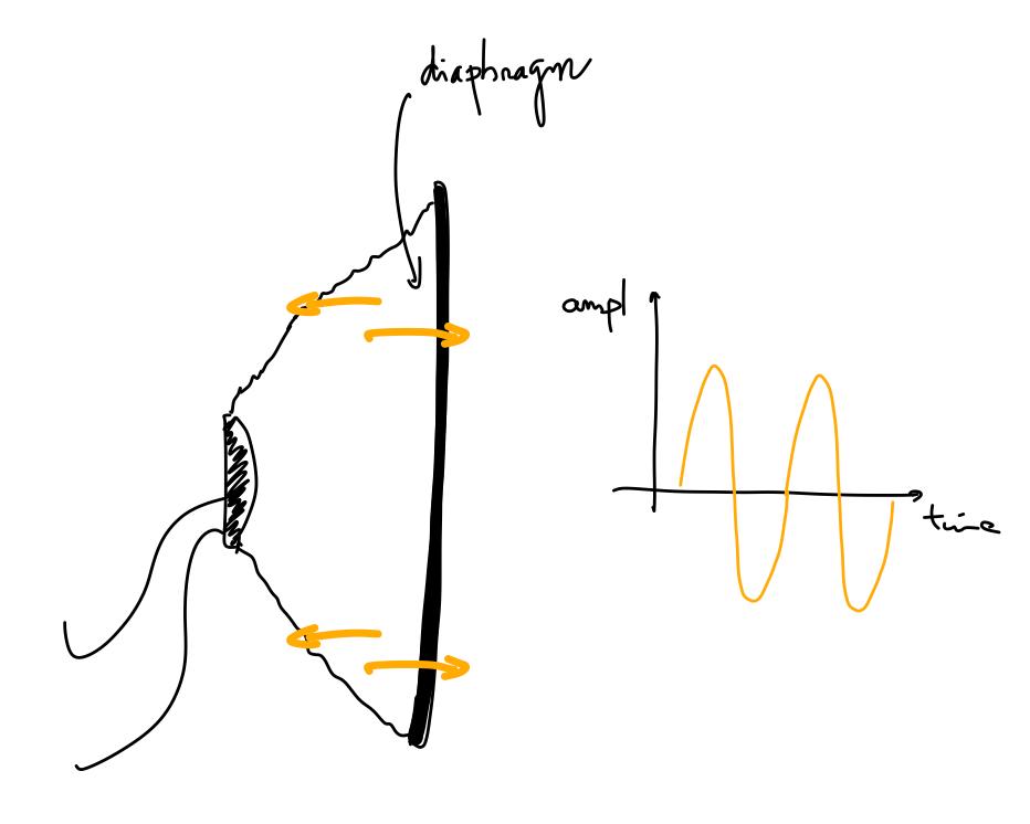 speaker diaphragm oscillation
