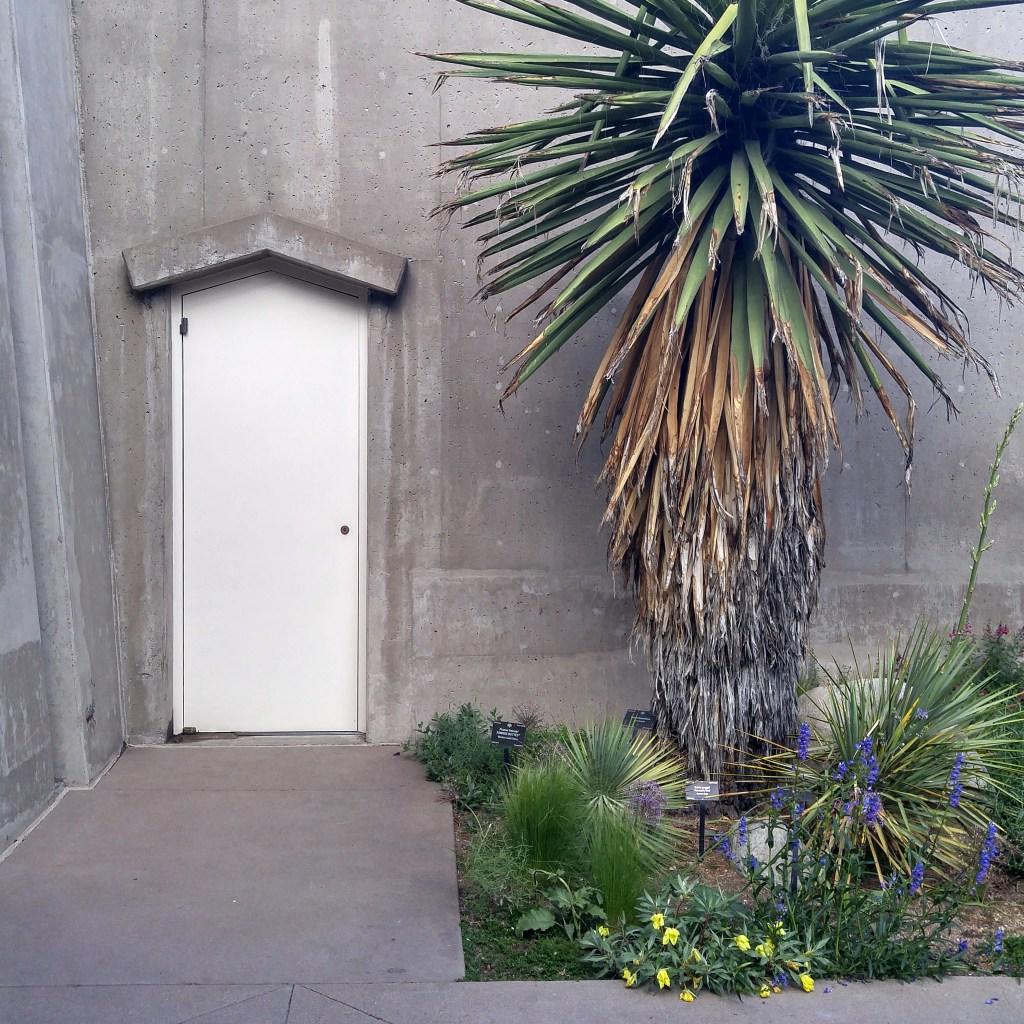 Interesting Door Photography