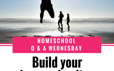 The Homeschooling Criticism Series – 5 ways to build your homeschooling confidence