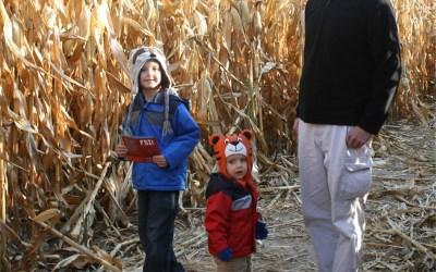 More Harvest Festivities