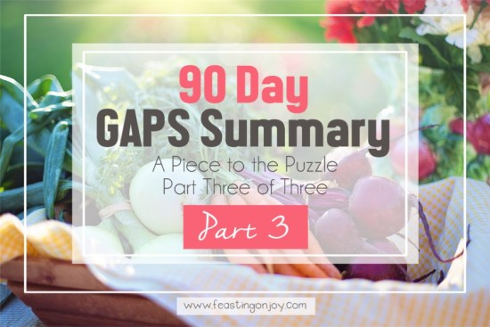 90 Day GAPS Summary { A Piece to the Puzzle Part Three of Three} 1 | Feasting On Joy
