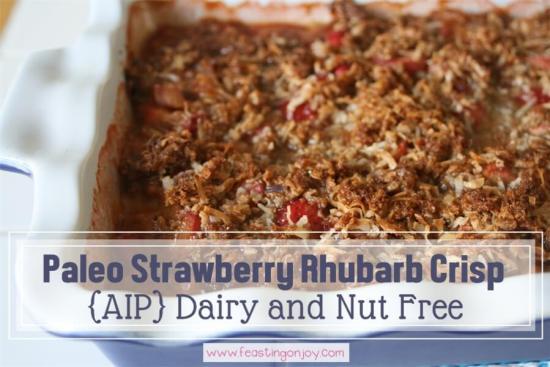 Paleo Strawberry Rhubarb Crisp {AIP} Dairy Free and Nut Free 1 | Feasting On Joy