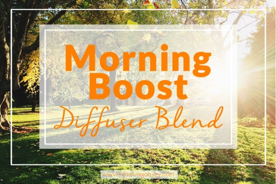 Morning Boost Diffuser Blend 1 | Feasting On Joy