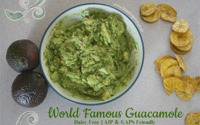 World Famous Guacamole {Diary Free, AIP and GAPS Friendly}