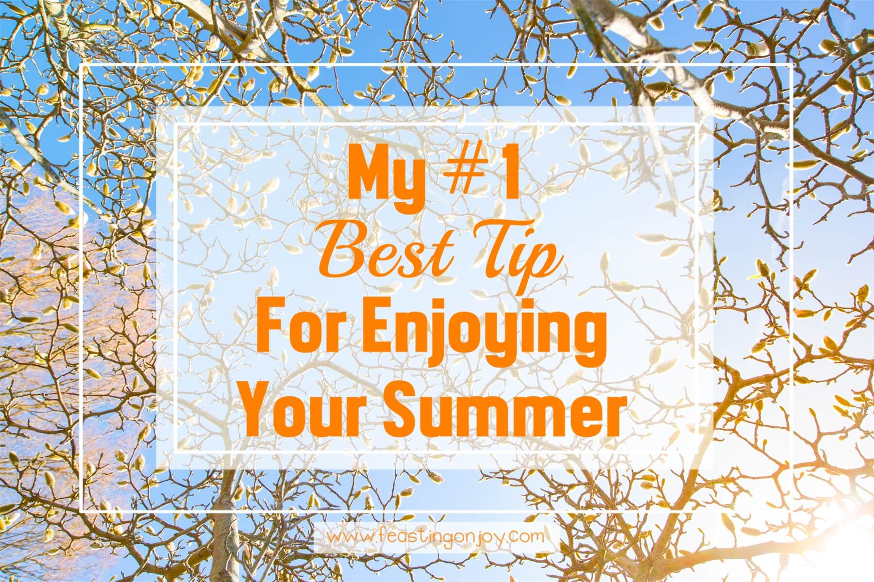 my number one best tip for enjoying your summer feasting on joy