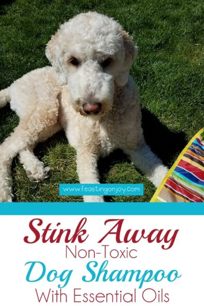 Stink Away Non-Toxic Dog Shampoo with Essential Oils | Feasting On Joy